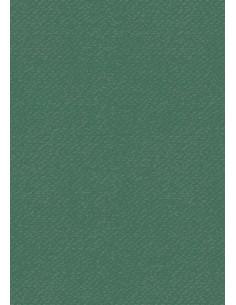 Cartoncino Heyda A4 220gr set 10fg. Verde scuro
