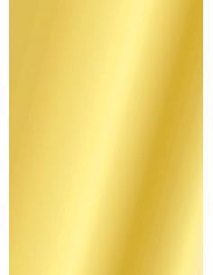 Cartoncino Heyda A4 300gr set 10fg. Oro Lucido