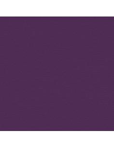 Set 10 fogli Cartoncino Efco 216gr 30,6x30,6cm - Grape Vine