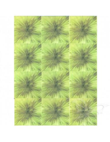 Fommy Decò SOFT Small MONET x12 verde salvia/verde cm.20x30
