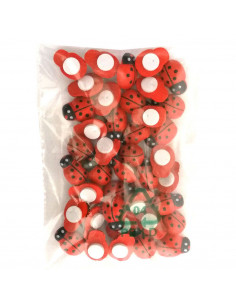 Set 40 pz. Coccinelle adesive piccole
