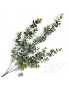 EUCALYPTUS col.verde 70cm. PTL16012SLF
