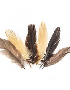 Set 15 Penne naturali colorate, toni del marrone
