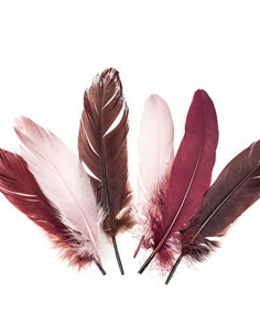 Set 15 Penne naturali colorate, toni del bordeaux