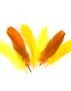Set 15 Penne naturali colorate, toni giallo arancio