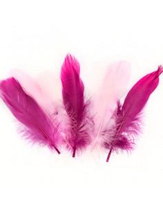 Set 15 Penne naturali colorate, toni del rosa