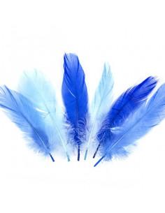 Set 15 Penne naturali colorate, toni dell' azzurro