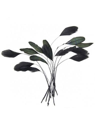 Set 15 Penne naturali nere