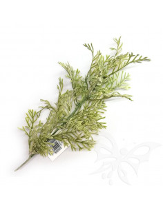 DUSTY GRASS col.verde 25cm. PTL16081S