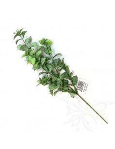 PEPPERMINT col.verde 25cm. PTL17169S