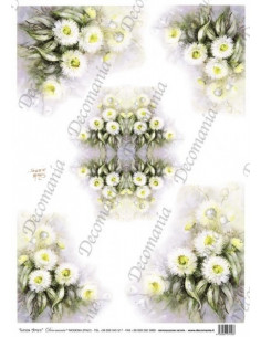 Carta riso fiori bianchi
