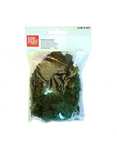 Muschio lichene verde abete 50gr