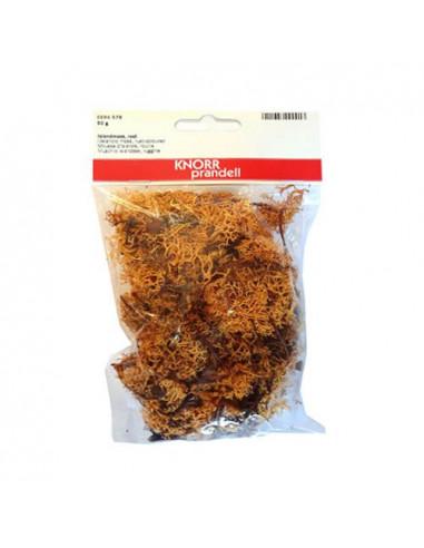 Muschio lichene Ruggine 50gr