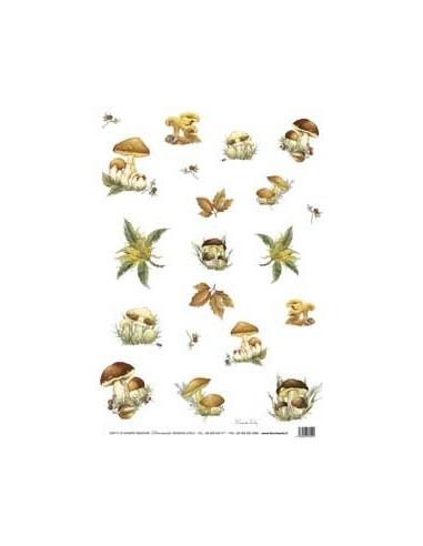 carta riso funghi
