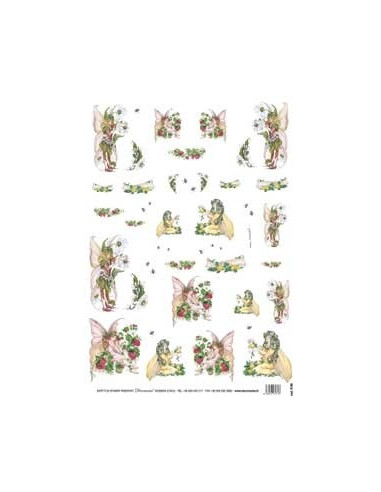 carta riso orsetti