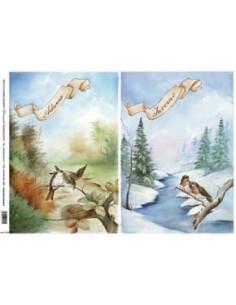 carta riso 4 stagioni