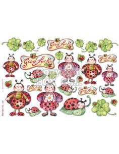 Carta riso  Coccinelle