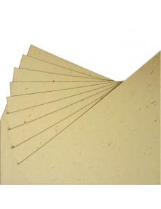 """Set 10fg. cartoncino Flora """"Tabacco"""" gr 240 formato A4"""