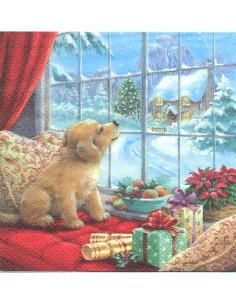 cagnolino alla finestra